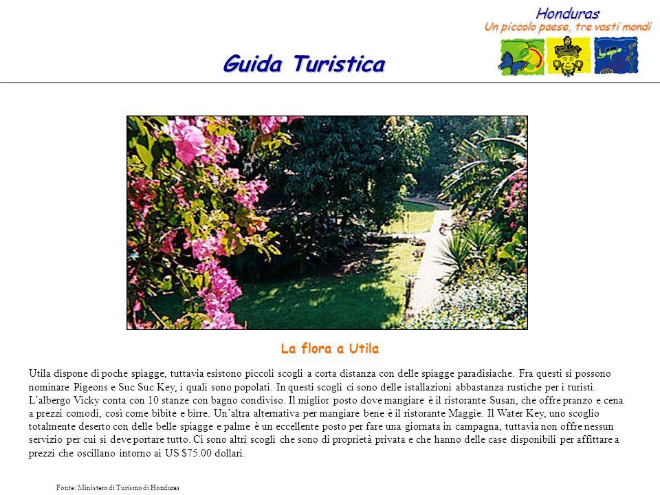 Honduras Un piccolo paese, tre vasti mondi Guida Turistica Fonte: Ministero di Turismo di Honduras Utila dispone di poche spiagge, tuttavia esistono p