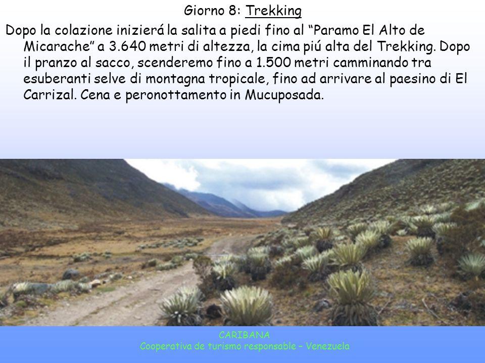 CARIBANA Cooperativa de turismo responsable – Venezuela Giorno 7: Mucuchíes Dopo la colazione saliremo fino al passo El Aguila (4.118 Mt!!), il punto piú alto della rete stradale andina.