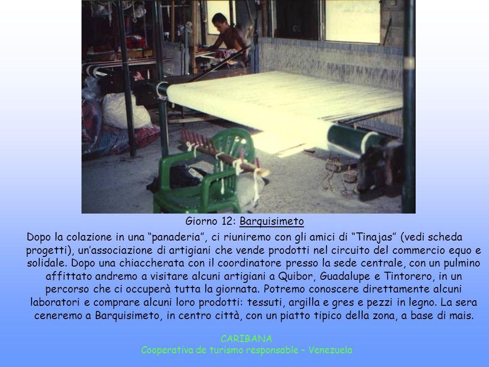 CARIBANA Cooperativa de turismo responsable – Venezuela Giorno 11: Trekking Colazione in Mucuposada e, se il tempo e la stanchezza lo permettono, potremo camminare fino al Rio Cubartí dove potremo fare bagni rinfrescanti, prima di iniziare il trasferimento verso Barquisimeto.