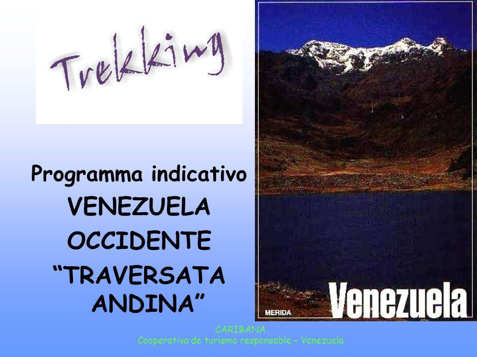 CARIBANA Cooperativa de turismo responsable – Venezuela Giorno 8: Trekking Dopo la colazione inizierá la salita a piedi fino al Paramo El Alto de Micarache a 3.640 metri di altezza, la cima piú alta del Trekking.