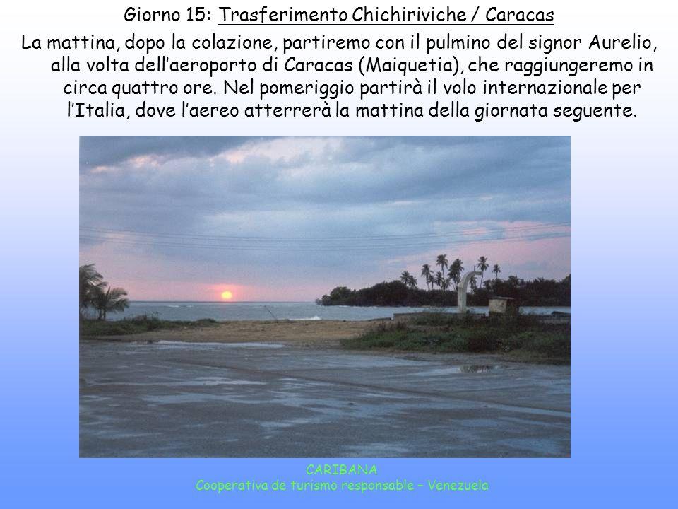 CARIBANA Cooperativa de turismo responsable – Venezuela La mattina seguente potremo fare una gita in barca nel Golfo di Caure, una laguna salmastra circondata da mangrovie, rifugio naturale di centinaia di uccelli migratori tropicali.