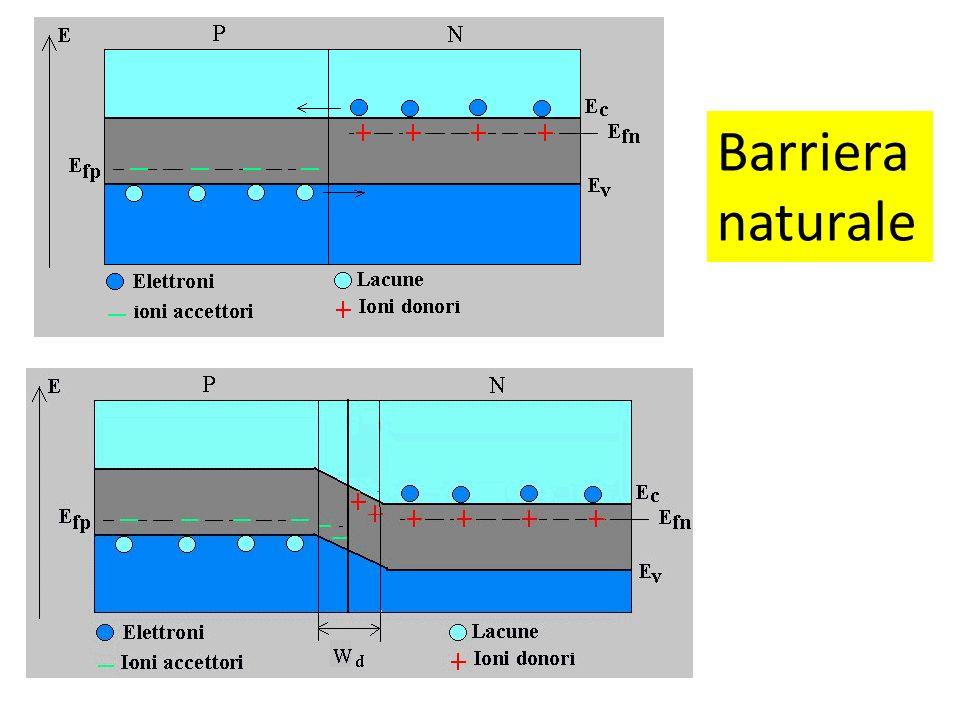 Barriera naturale
