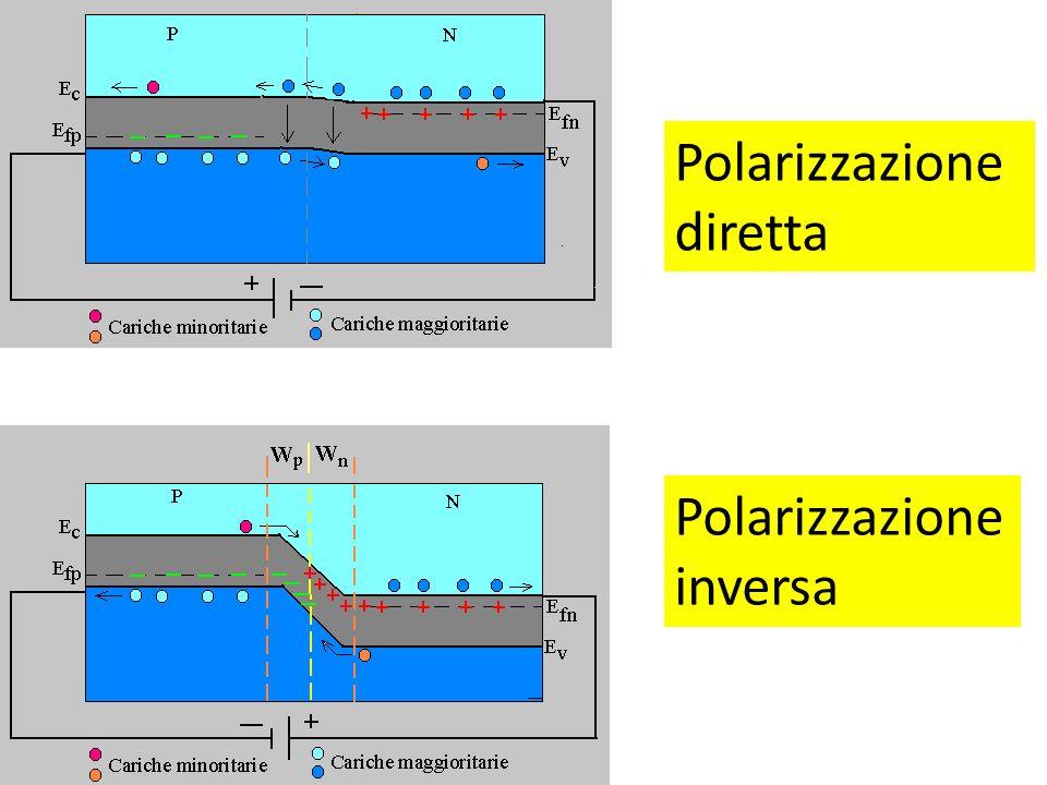 Polarizzazione diretta Polarizzazione inversa