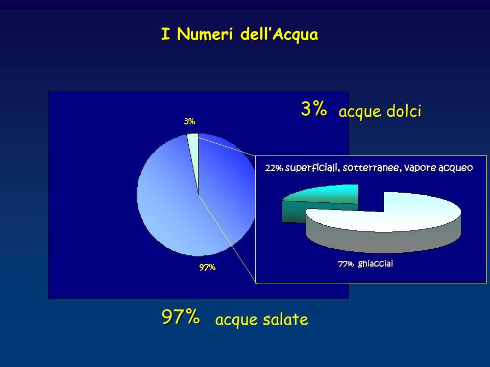 I Numeri dellAcqua 97% acque salate 3% acque dolci 77% ghiacciai 22% superficiali, sotterranee, vapore acqueo