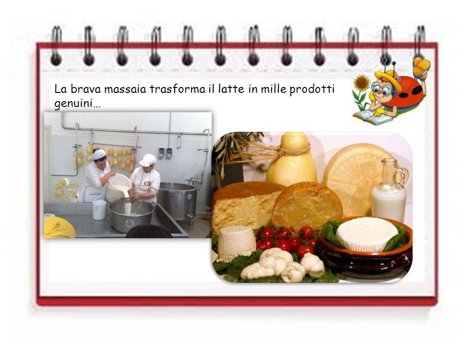 La brava massaia trasforma il latte in mille prodotti genuini…