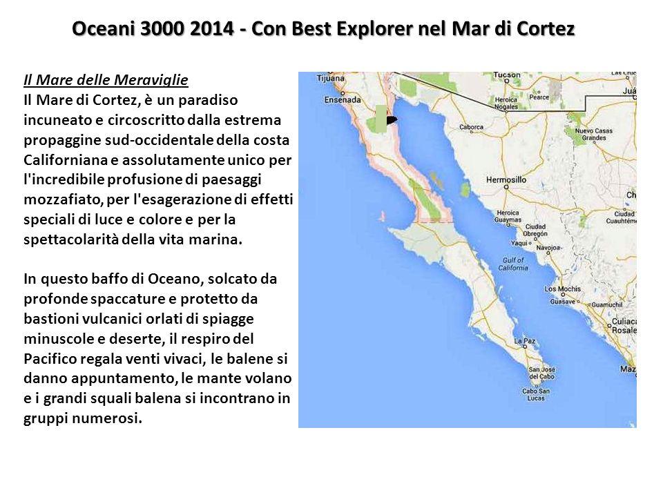 Oceani 3000 2014 - Con Best Explorer nel Mar di Cortez Il Mare delle Meraviglie Il Mare di Cortez, è un paradiso incuneato e circoscritto dalla estrem