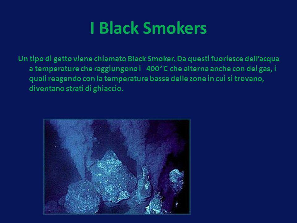 I Black Smokers Un tipo di getto viene chiamato Black Smoker. Da questi fuoriesce dellacqua a temperature che raggiungono i 400° C che alterna anche c