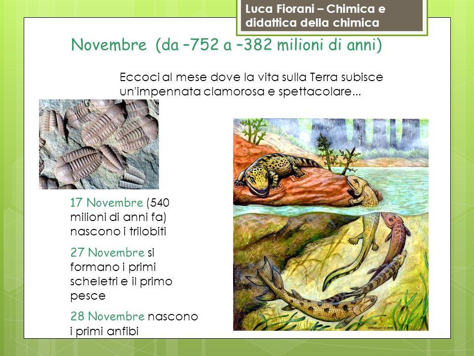 Luca Fiorani – Chimica e didattica della chimica Novembre (da –752 a –382 milioni di anni) 17 Novembre (540 milioni di anni fa) nascono i trilobiti 27