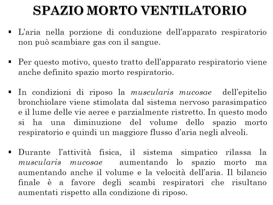 SPAZIO MORTO VENTILATORIO Laria nella porzione di conduzione dellapparato respiratorio non può scambiare gas con il sangue. Per questo motivo, questo