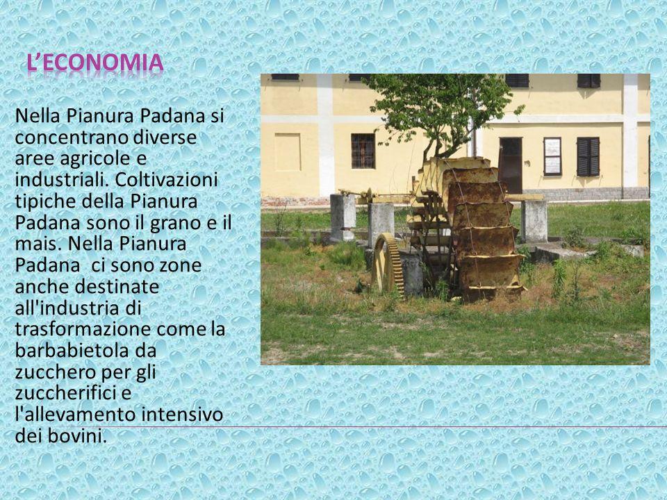 Nella Pianura Padana si concentrano diverse aree agricole e industriali. Coltivazioni tipiche della Pianura Padana sono il grano e il mais. Nella Pian