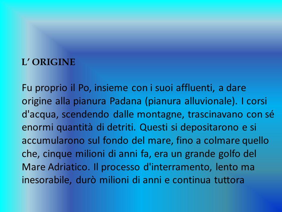 L ORIGINE Fu proprio il Po, insieme con i suoi affluenti, a dare origine alla pianura Padana (pianura alluvionale). I corsi d'acqua, scendendo dalle m