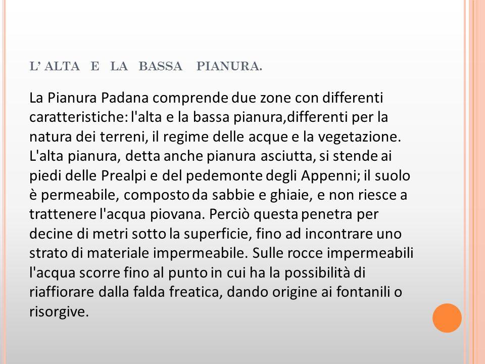 L ALTA E LA BASSA PIANURA. La Pianura Padana comprende due zone con differenti caratteristiche: l'alta e la bassa pianura,differenti per la natura dei