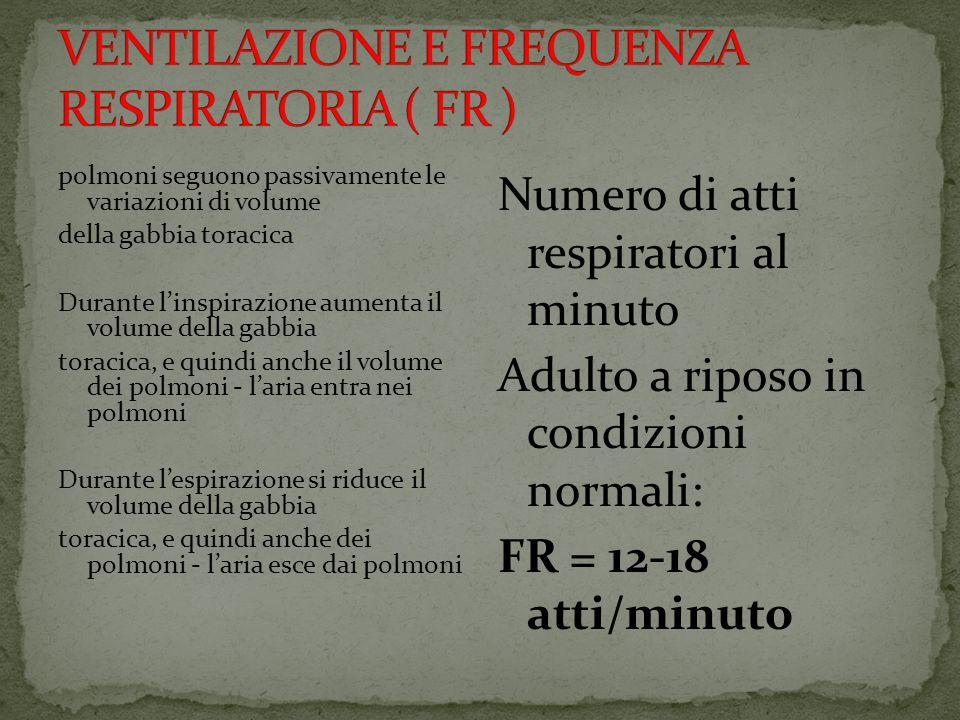 polmoni seguono passivamente le variazioni di volume della gabbia toracica Durante linspirazione aumenta il volume della gabbia toracica, e quindi anche il volume dei polmoni - laria entra nei polmoni Durante lespirazione si riduce il volume della gabbia toracica, e quindi anche dei polmoni - laria esce dai polmoni Numero di atti respiratori al minuto Adulto a riposo in condizioni normali: FR = 12-18 atti/minuto