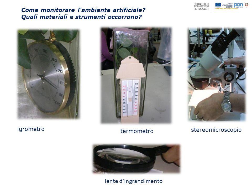 Come monitorare lambiente artificiale? Quali materiali e strumenti occorrono? igrometro termometro lente dingrandimento stereomicroscopio
