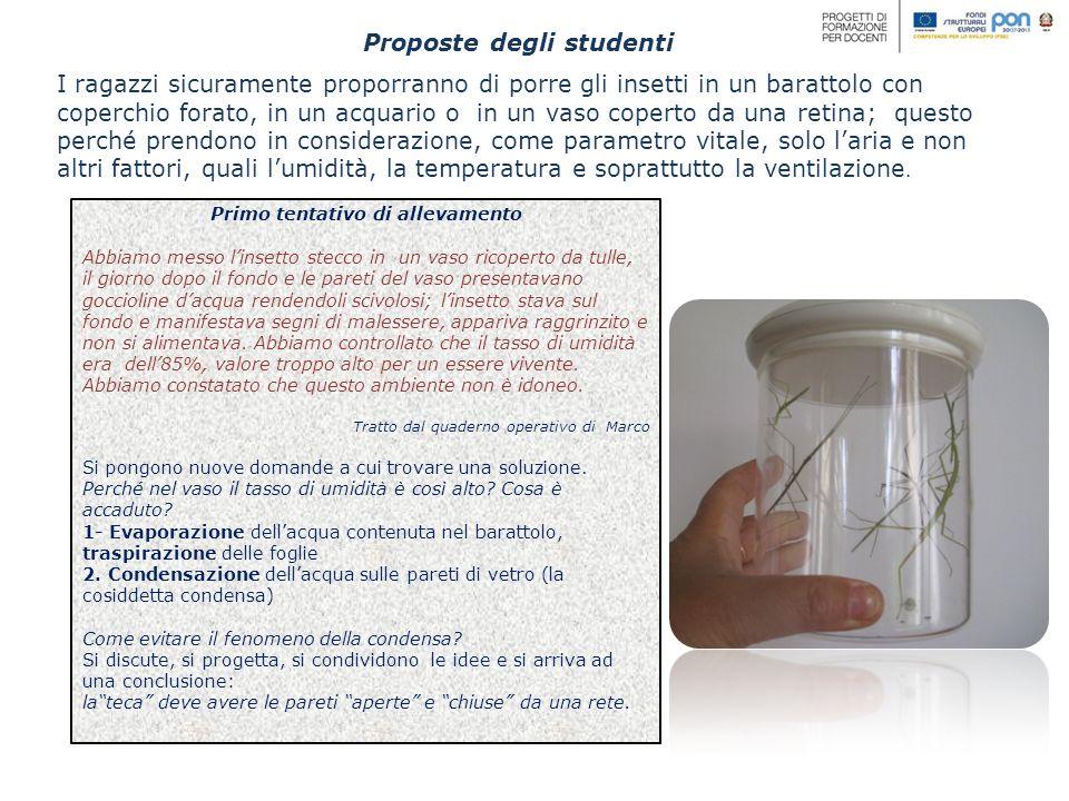 Proposte degli studenti I ragazzi sicuramente proporranno di porre gli insetti in un barattolo con coperchio forato, in un acquario o in un vaso coper