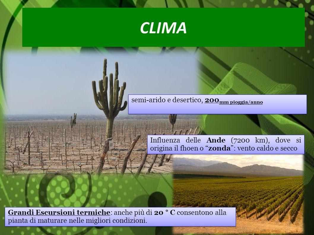 Ringraziamo La Provincia Di Avellino LUniversità di Cuyo I Tutor: Ing.