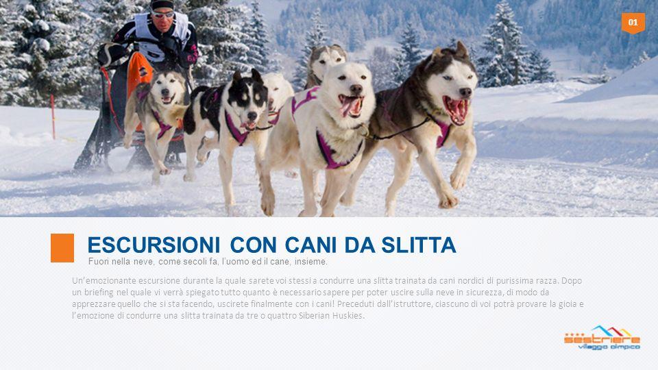 Unemozionante escursione durante la quale sarete voi stessi a condurre una slitta trainata da cani nordici di purissima razza. Dopo un briefing nel qu