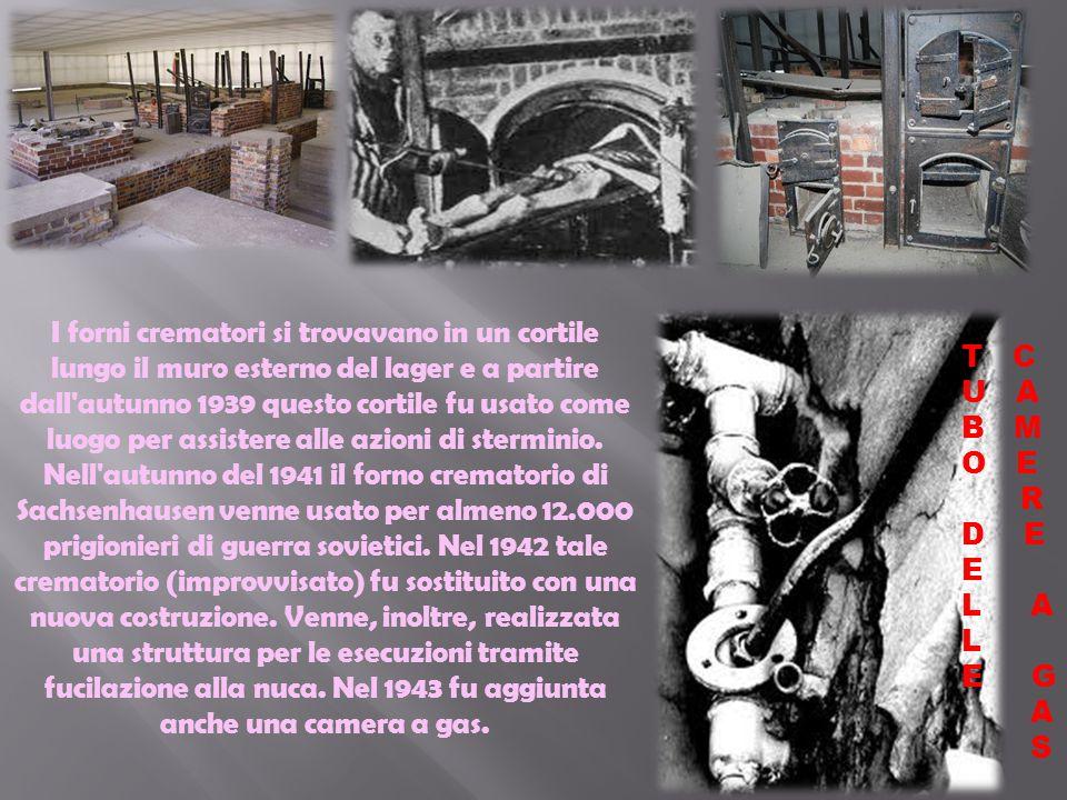 Ai prigionieri venivano tagliati i capelli che poi venivano usati per imbottire i cuscini,materassi e bombe. Venivano tagliati da altri prigionieri ch