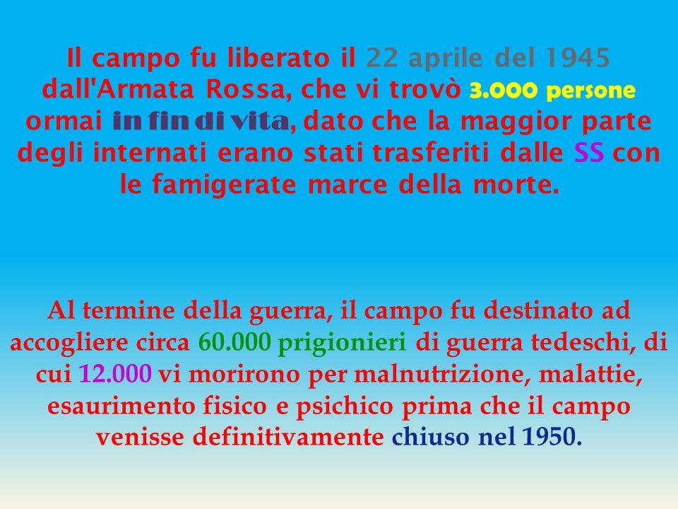 I Principi generali I detenuti dei campi di concentramento, senza considerazione di età, di origine e di rango, sono posti in condizione di subordinaz