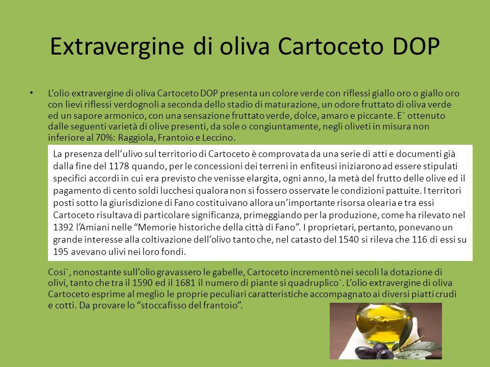 Extravergine di oliva Cartoceto DOP Lolio extravergine di oliva Cartoceto DOP presenta un colore verde con riflessi giallo oro o giallo oro con lievi