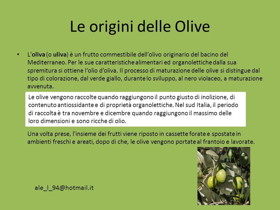 Le origini delle Olive L'oliva (o uliva) è un frutto commestibile dellolivo originario del bacino del Mediterraneo. Per le sue caratteristiche aliment