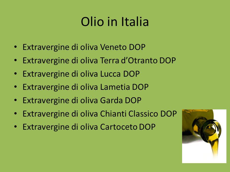 Olio in Italia Extravergine di oliva Veneto DOP Extravergine di oliva Terra dOtranto DOP Extravergine di oliva Lucca DOP Extravergine di oliva Lametia