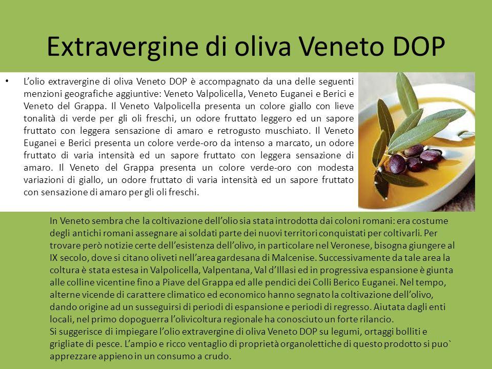 Lolio extravergine di oliva Veneto DOP è accompagnato da una delle seguenti menzioni geografiche aggiuntive: Veneto Valpolicella, Veneto Euganei e Ber