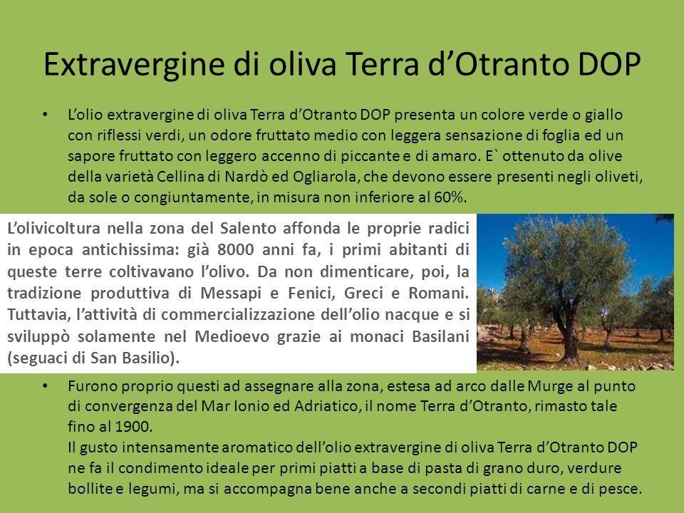 Extravergine di oliva Terra dOtranto DOP Lolio extravergine di oliva Terra dOtranto DOP presenta un colore verde o giallo con riflessi verdi, un odore