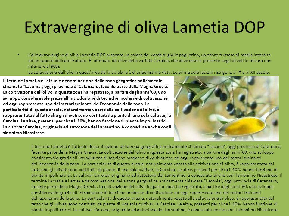 Extravergine di oliva Lametia DOP Lolio extravergine di oliva Lametia DOP presenta un colore dal verde al giallo paglierino, un odore fruttato di medi