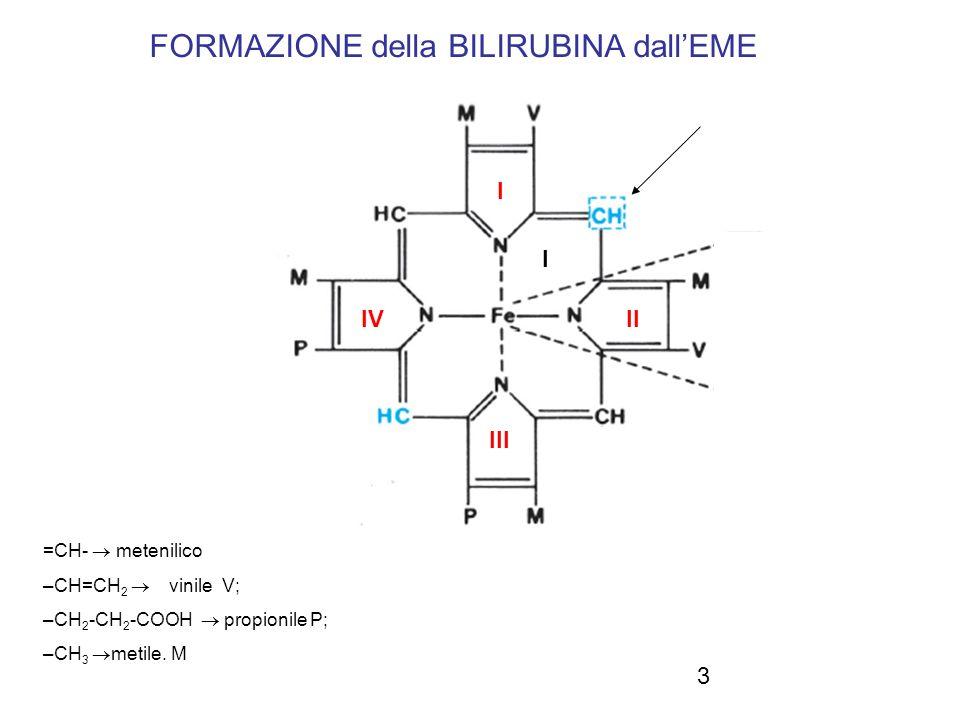 3 FORMAZIONE della BILIRUBINA dallEME =CH- metenilico –CH=CH 2 vinile V; –CH 2 -CH 2 -COOH propionile P; –CH 3 metile. M I II I III IV