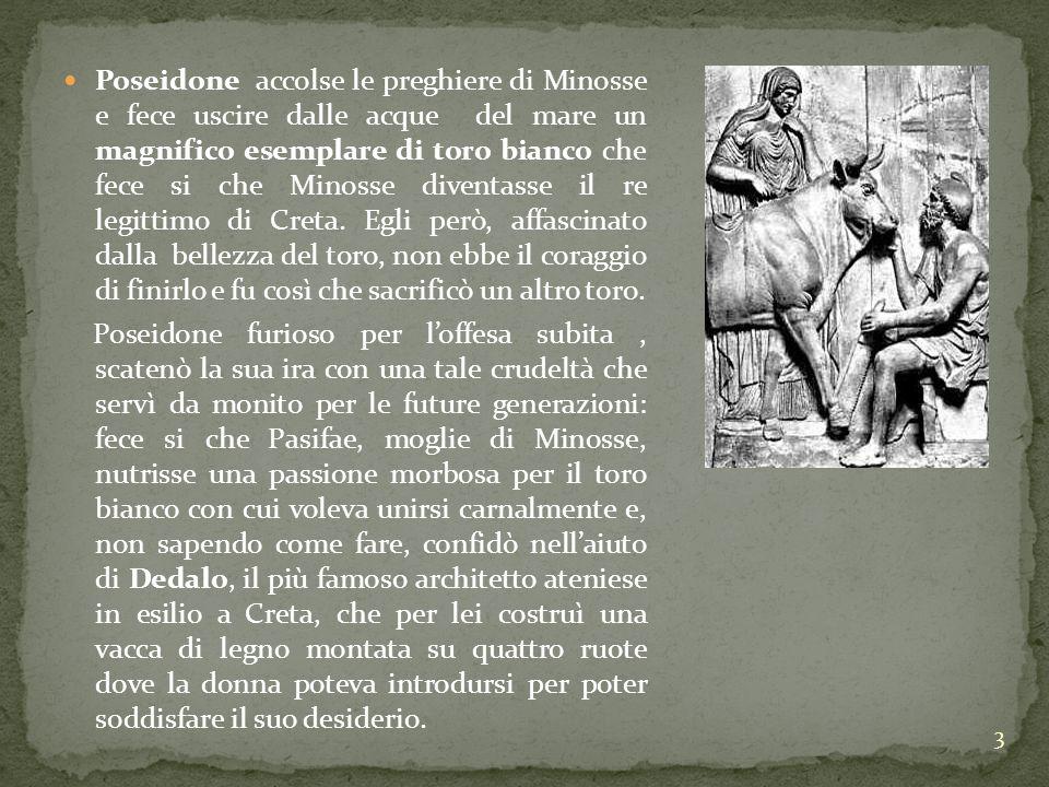 3 Poseidone accolse le preghiere di Minosse e fece uscire dalle acque del mare un magnifico esemplare di toro bianco che fece si che Minosse diventass