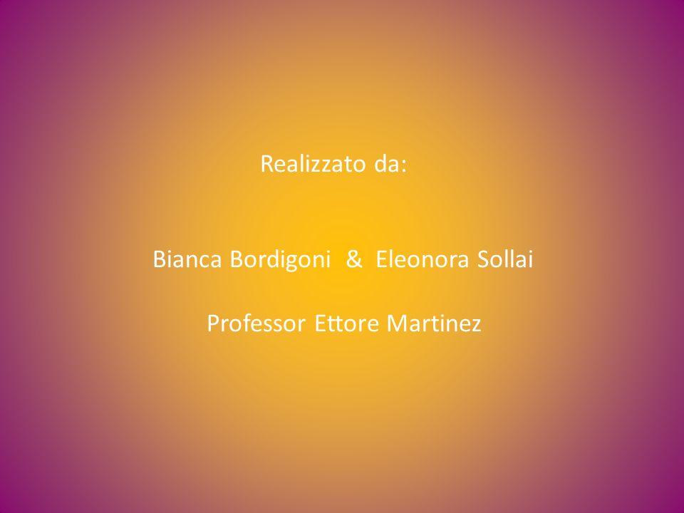 Realizzato da: Bianca Bordigoni & Eleonora Sollai Professor Ettore Martinez
