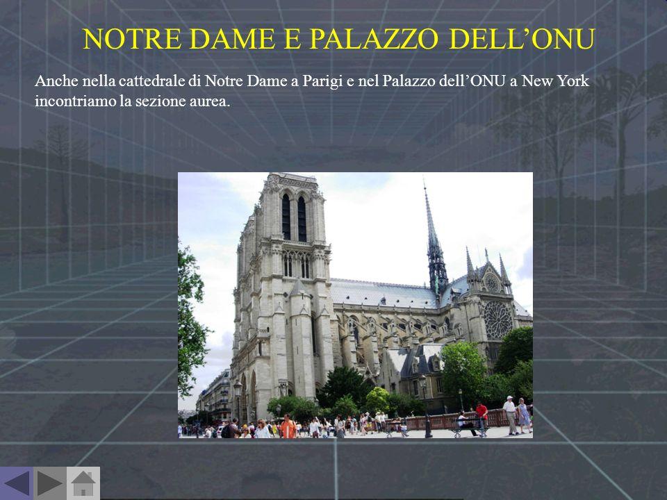 NOTRE DAME E PALAZZO DELLONU Anche nella cattedrale di Notre Dame a Parigi e nel Palazzo dellONU a New York incontriamo la sezione aurea.