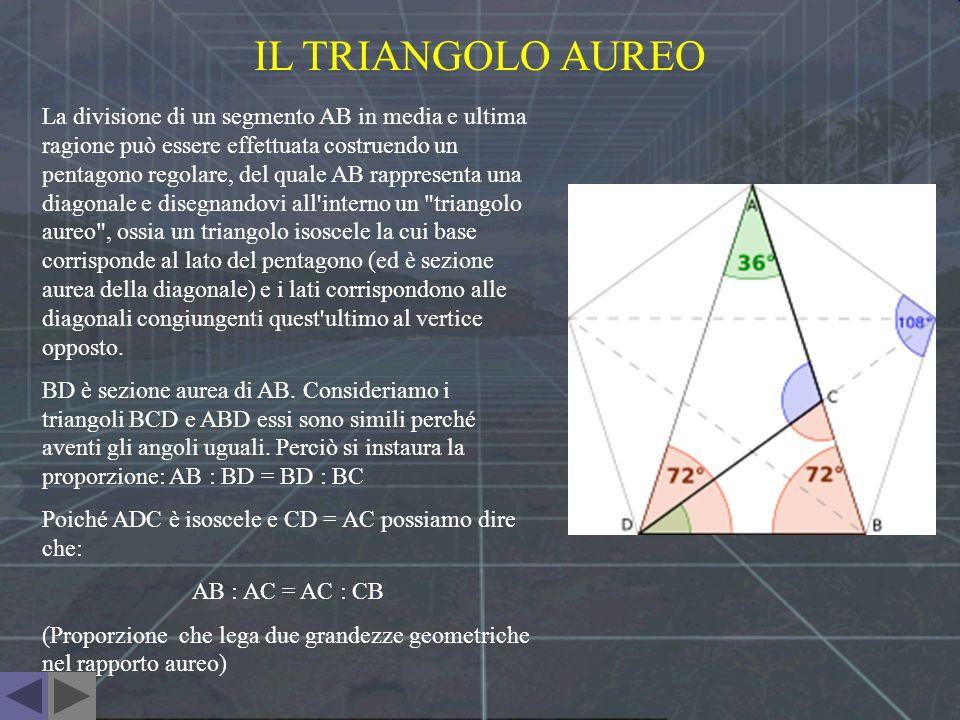 IL TRIANGOLO AUREO La divisione di un segmento AB in media e ultima ragione può essere effettuata costruendo un pentagono regolare, del quale AB rappr