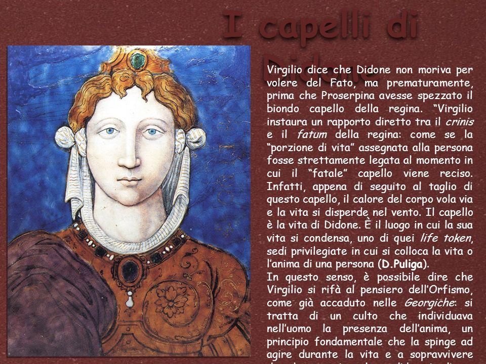 I capelli di Didone Virgilio dice che Didone non moriva per volere del Fato, ma prematuramente, prima che Proserpina avesse spezzato il biondo capello