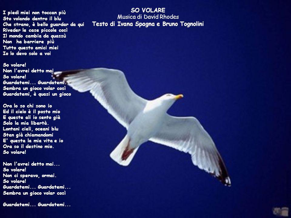 SO VOLARE Musica di David Rhodes Testo di Ivana Spagna e Bruno Tognolini I piedi miei non toccan più Sto volando dentro il blu Che strano, è bello gua