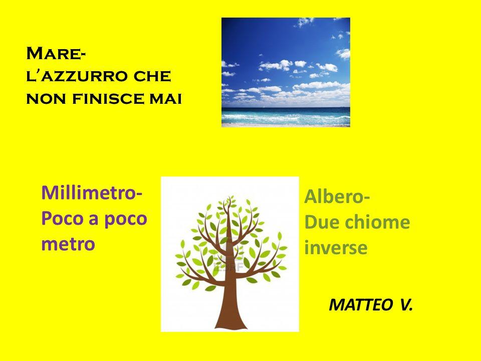 Mare- l azzurro che non finisce mai Millimetro- Poco a poco metro Albero- Due chiome inverse MATTEO V.