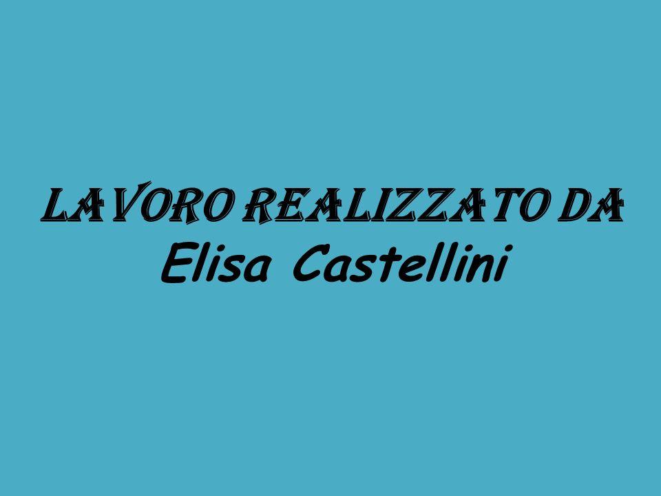 LAVORO REALIZZATO DA Elisa Castellini