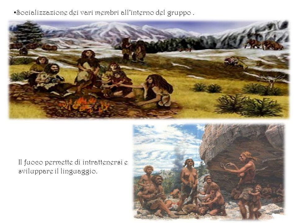 Socializzazione dei vari membri allinterno del gruppo. Il fuoco permette di intrattenersi e sviluppare il linguaggio.
