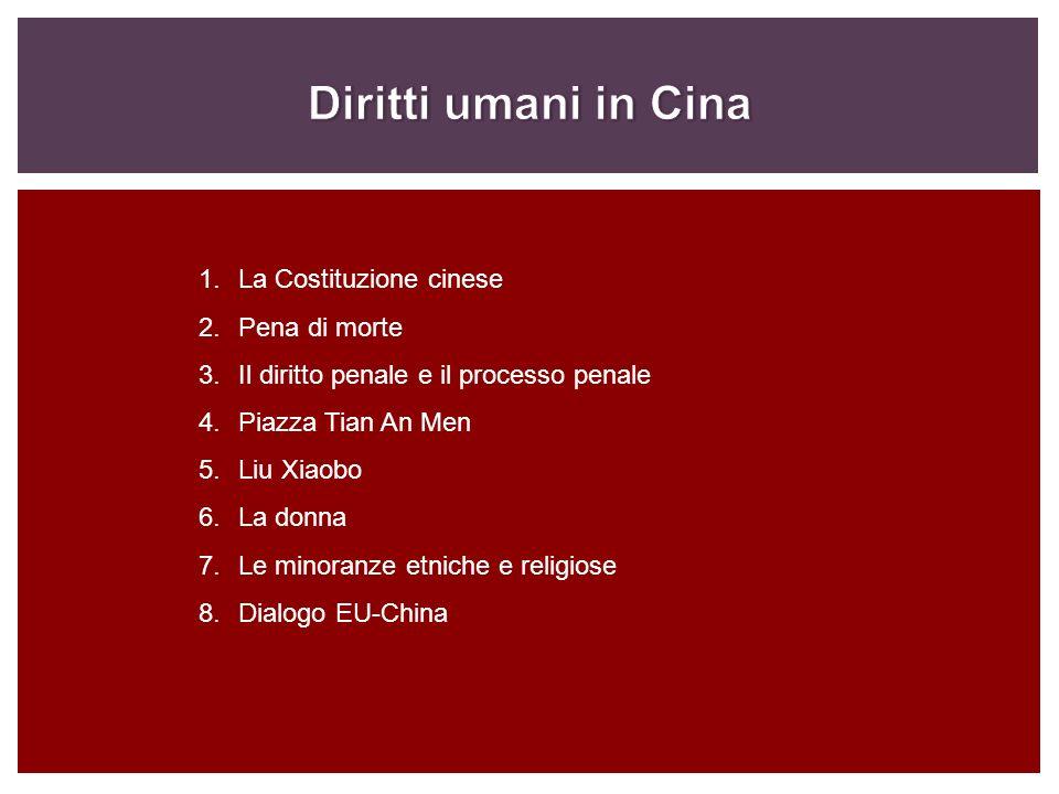 1.La Costituzione cinese 2.Pena di morte 3.Il diritto penale e il processo penale 4.Piazza Tian An Men 5.Liu Xiaobo 6.La donna 7.Le minoranze etniche