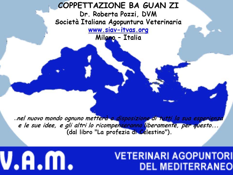 COPPETTAZIONE BA GUAN ZI Dr. Roberta Pozzi, DVM Società Italiana Agopuntura Veterinaria www.siav-itvas.org Milano – Italia. www.siav-itvas.org..nel nu