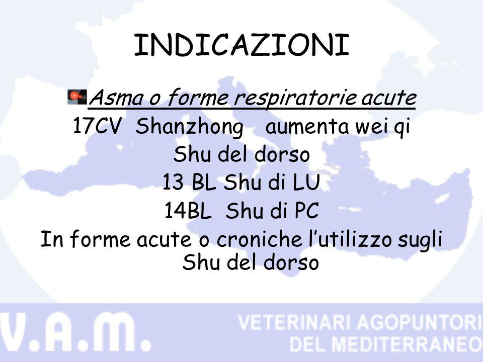 INDICAZIONI Asma o forme respiratorie acute 17CV Shanzhongaumenta wei qi Shu del dorso 13 BL Shu di LU 14BL Shu di PC In forme acute o croniche lutilizzo sugli Shu del dorso