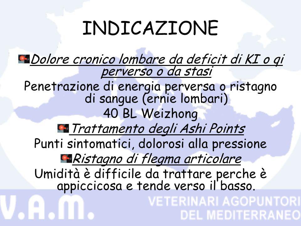INDICAZIONE Dolore cronico lombare da deficit di KI o qi perverso o da stasi Penetrazione di energia perversa o ristagno di sangue (ernie lombari) 40