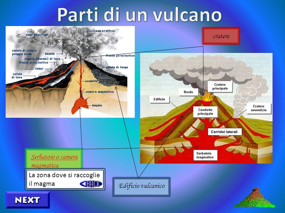 Serbatoio o camera magmatica Edificio vulcanico cratere