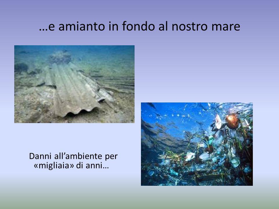 …e amianto in fondo al nostro mare Danni allambiente per «migliaia» di anni…