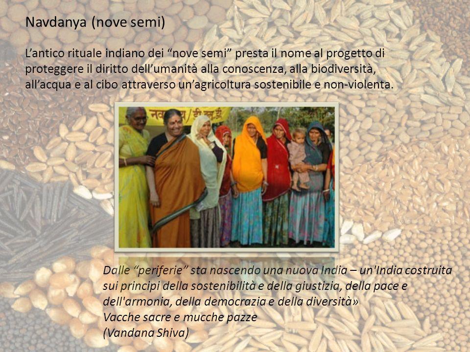 Navdanya (nove semi) Lantico rituale indiano dei nove semi presta il nome al progetto di proteggere il diritto dellumanità alla conoscenza, alla biodiversità, allacqua e al cibo attraverso unagricoltura sostenibile e non-violenta.
