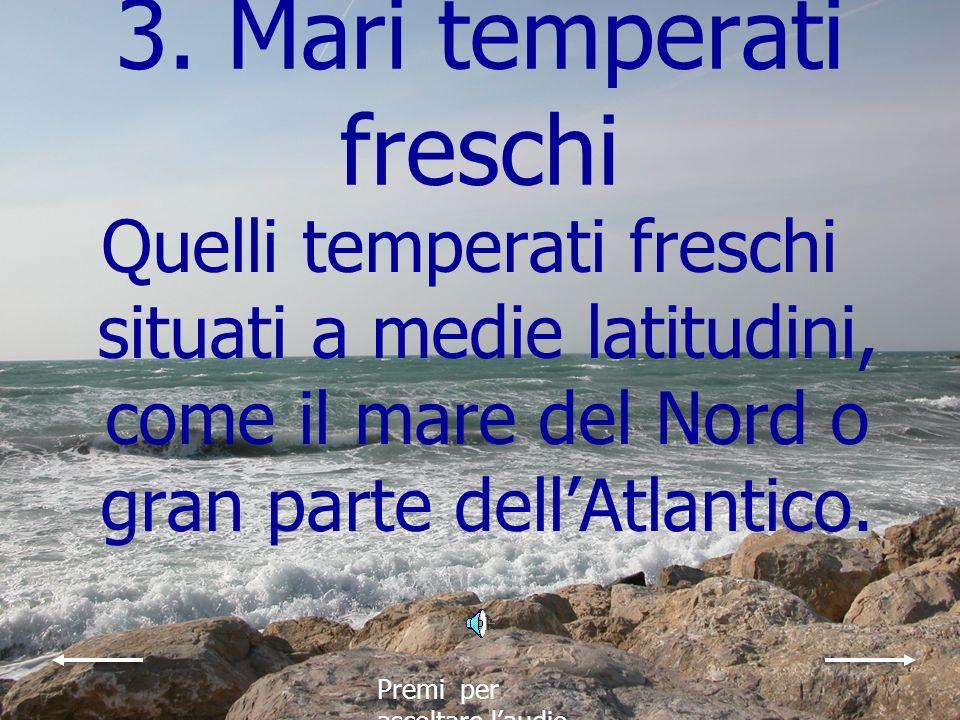 2. Mari freddi Quelli freddi dove lacqua e di pochissimi gradi e dove a volte si formano lastre di ghiaccio come il mare di Barents a nord della Scand
