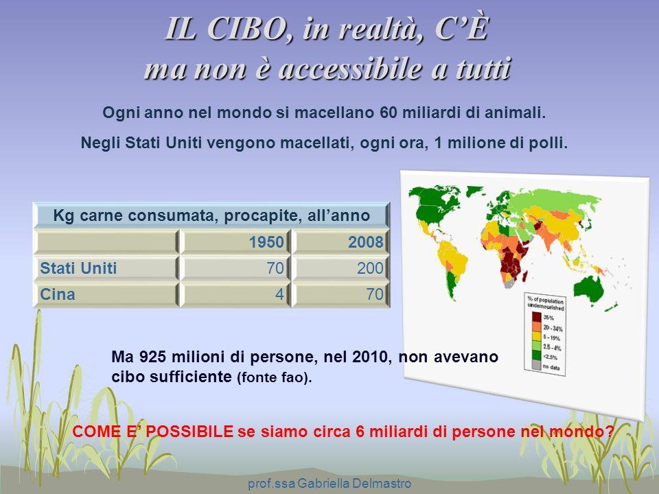 IL CIBO, in realtà, CÈ ma non è accessibile a tutti prof.ssa Gabriella Delmastro Ogni anno nel mondo si macellano 60 miliardi di animali.