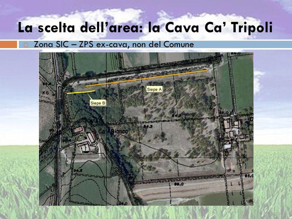 La scelta dellarea: la Cava Ca Tripoli Zona SIC – ZPS ex-cava, non del Comune