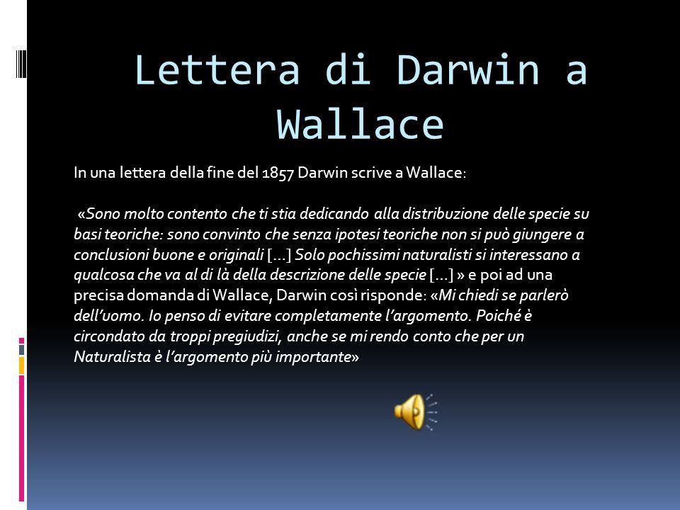 Il saggio di Darwin Darwin nel 1858 compose il saggio chiamato On the origin of species by means of natural selection. Questo saggio influenzò molto i